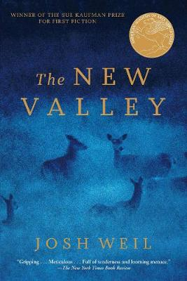 The New Valley: Novellas (Paperback)
