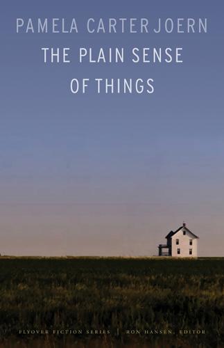 The Plain Sense of Things - Flyover Fiction (Paperback)