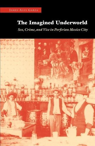 The Imagined Underworld: Sex, Crime, and Vice in Porfirian Mexico City (Paperback)