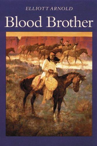 Blood Brother (Paperback)