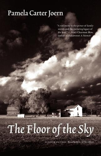 The Floor of the Sky - Flyover Fiction (Paperback)
