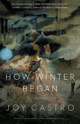 How Winter Began: Stories - Flyover Fiction (Paperback)