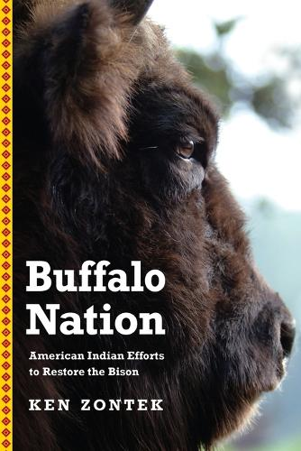 Buffalo Nation: American Indian Efforts to Restore the Bison (Paperback)