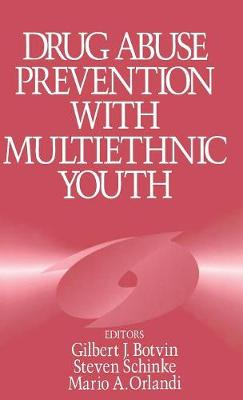 Drug Abuse Prevention with Multiethnic Youth (Hardback)