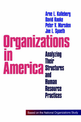 Organizations in America: Analysing Their Structures and Human Resource Practices (Paperback)