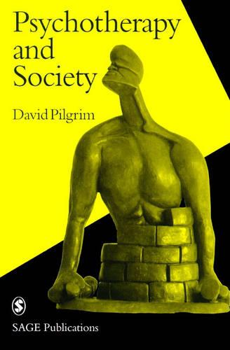 Psychotherapy and Society - Perspectives on Psychotherapy series (Paperback)
