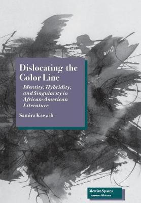 Dislocating the Color Line: Identity, Hybridity, and Singularity in African-American Narrative - Mestizo Spaces / Espaces Metisses (Hardback)