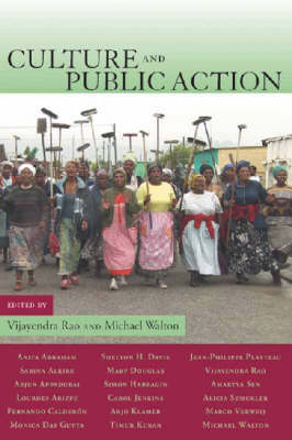 Culture and Public Action (Paperback)