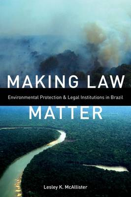 Making Law Matter: Environmental Protection and Legal Institutions in Brazil (Hardback)