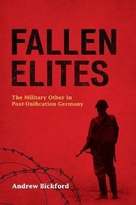 Fallen Elites: The Military Other in Post-Unification Germany (Paperback)