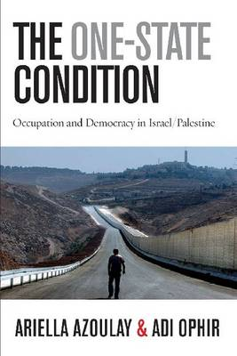 The One-State Condition: Occupation and Democracy in Israel/Palestine - Stanford Studies in Middle Eastern and Islamic Societies and Cultures (Hardback)