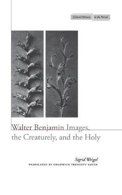 Walter Benjamin: Images, the Creaturely, and the Holy - Cultural Memory in the Present (Hardback)