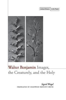 Walter Benjamin: Images, the Creaturely, and the Holy - Cultural Memory in the Present (Paperback)