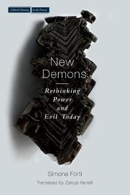 New Demons: Rethinking Power and Evil Today - Cultural Memory in the Present (Paperback)