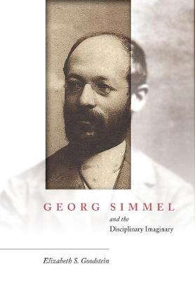 Georg Simmel and the Disciplinary Imaginary (Hardback)