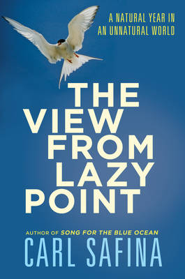 The View from Lazy Point: A Natural Year in an Unnatural World (Hardback)