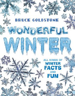 Wonderful Winter: All Kinds of Winter Facts and Fun (Hardback)