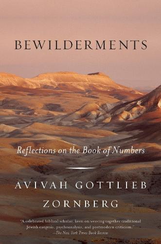 Bewilderments (Paperback)