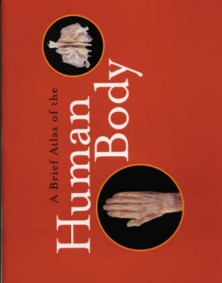 Brief Atlas of the Human Body (Paperback)