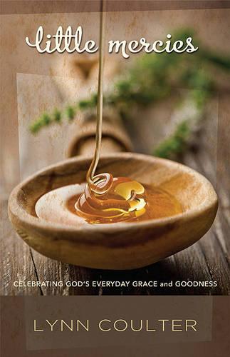Little Mercies: Celebrating God's Everyday Grace and Goodness (Paperback)
