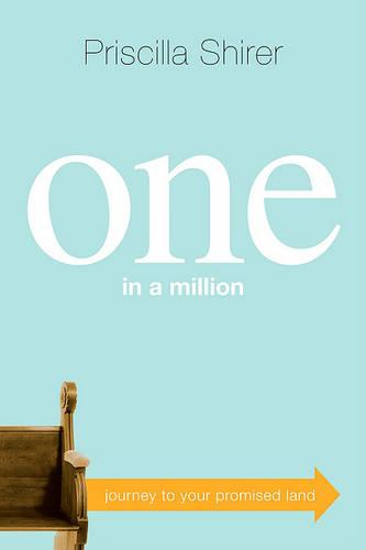 One in a Million: Journey to Your Promised Land (Paperback)