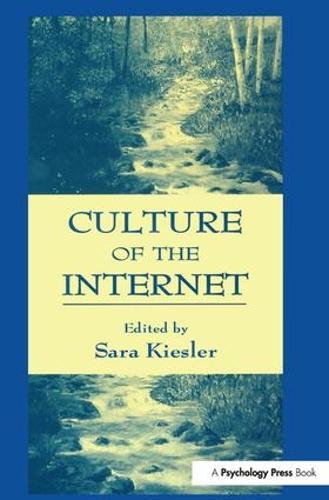 Culture of the Internet (Hardback)