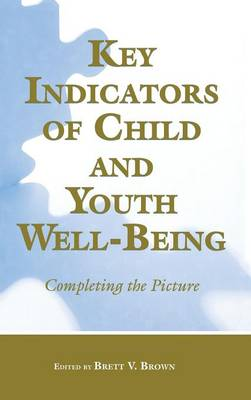 Key Indicators of Child and Youth Well-Being: Completing the Picture (Hardback)