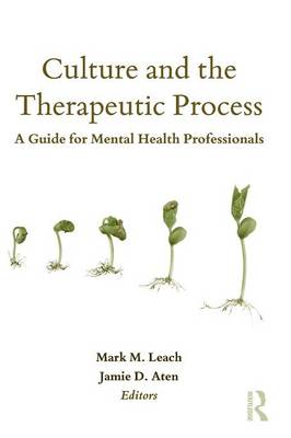 Culture and the Therapeutic Process: A Guide for Mental Health Professionals - Counseling and Psychotherapy: Investigating Practice from Scientific, Historical, and Cultural Perspectives (Paperback)