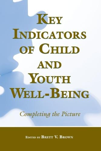 Key Indicators of Child and Youth Well-Being: Completing the Picture (Paperback)