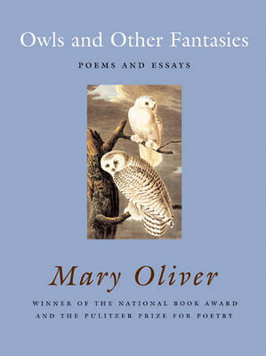 Owls And Other Fantasies (Hardback)