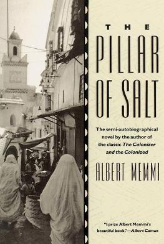 The Pillar of Salt (Paperback)