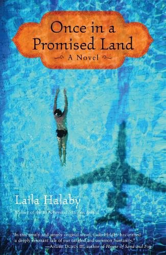 Once In A Promised Land (Paperback)