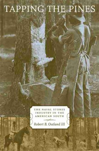 Tapping the Pines: The Naval Stores Industry in the American South (Hardback)