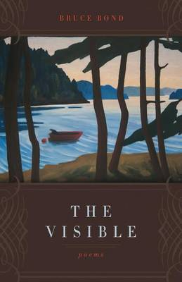 The Visible: Poems (Paperback)