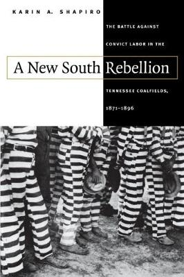 A New South Rebellion: The Battle against Convict Labor in the Tennessee Coalfields, 1871-1896 (Hardback)