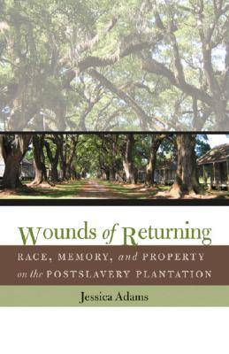 Wounds of Returning: Race, Memory, and Property on the Postslavery Plantation - New Directions in Southern Studies (Hardback)