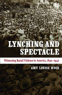 Lynching and Spectacle: Witnessing Racial Violence in America, 1890-1940 - New Directions in Southern Studies (Hardback)