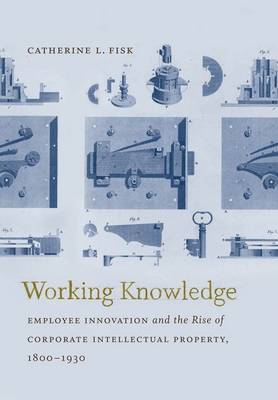 Working Knowledge: Employee Innovation and the Rise of Corporate Intellectual Property, 1800-1930 - Studies in Legal History (Hardback)