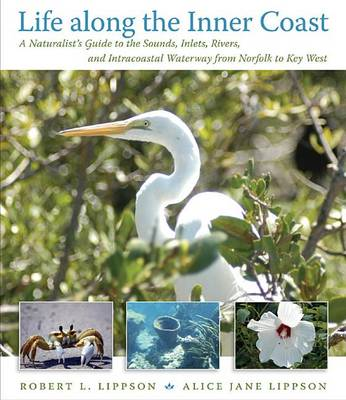 Life Along the Inner Coast: A Naturalist's Guide to the Sounds, Inlets, Rivers, and Intracoastal Waterway from Norfolk to Key West (Hardback)