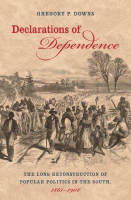 Declarations of Dependence: The Long Reconstruction of Popular Politics in the South, 1861-1908 (Hardback)