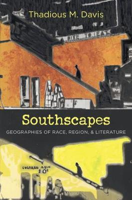Southscapes: Geographies of Race, Region, and Literature - New Directions in Southern Studies (Hardback)