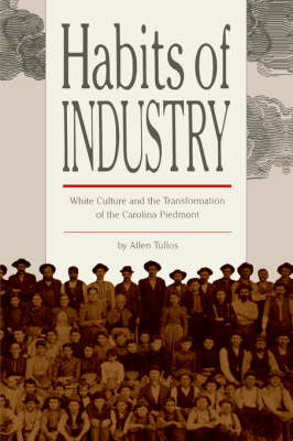 Habits of Industry: White Culture and the Transformation of the Carolina Piedmont (Paperback)