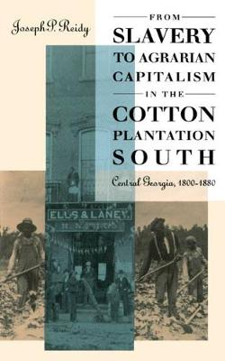 From Slavery to Agrarian Capitalism in the Cotton Plantation South: Central Georgia, 1800-1880 (Paperback)