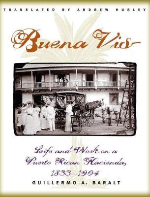 Buena Vista: Life and Work on a Puerto Rican Hacienda, 1833-1904 (Paperback)