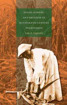 Sugar, Slavery, and Freedom in Nineteenth-Century Puerto Rico (Paperback)