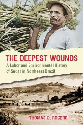 The Deepest Wounds: A Labor and Environmental History of Sugar in Northeast Brazil (Paperback)