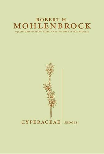 Cyperaceae: Sedges (Hardback)