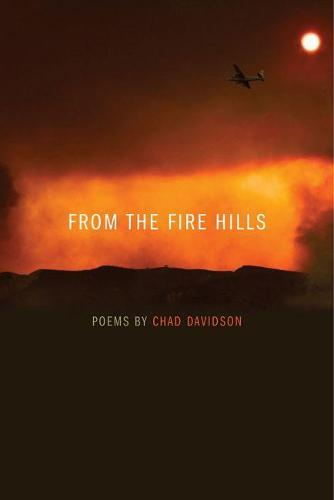 From the Fire Hills: Poems by Chad Davidson - Crab Orchard Series in Poetry-Editor's Selection (Paperback)