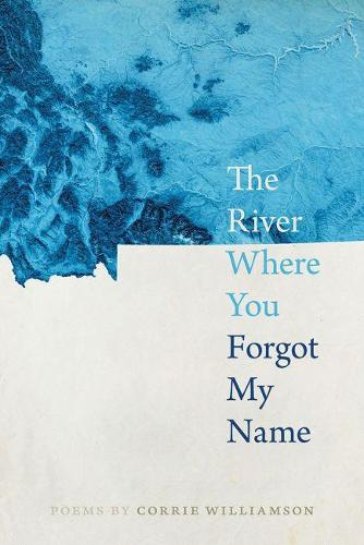The River Where You Forgot My Name - Crab Orchard Series in Poetry (Paperback)