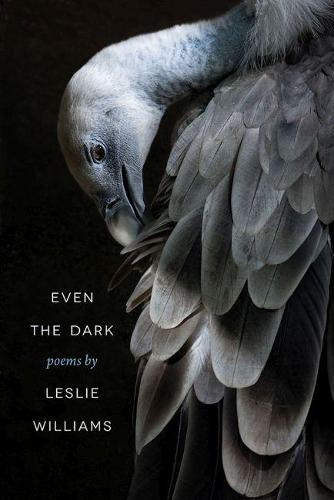 Even the Dark - Crab Orchard Series in Poetry (Paperback)
